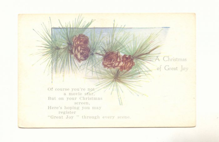 BRANCH OF PINE CONES CHRISTMAS JOY UNUSED VINTAGE   POSTCARD #356