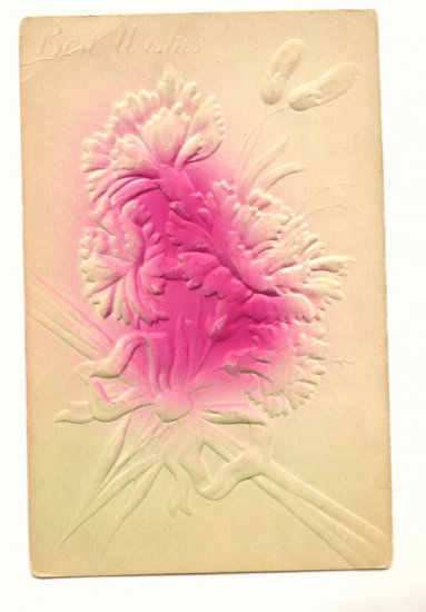 UNUSED HEAVILY EMBOSSED CARNATION BUDS VINTAGE POSTCARD    #366
