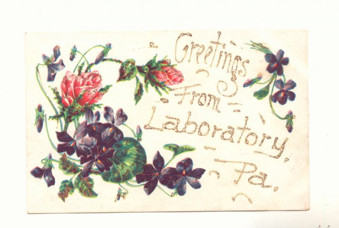 GREETINGS FROM LABORATORY, PENNSYLVANIA POSTCARD ROSES   #374