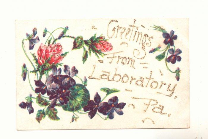 GREETINGS FROM LABORATORY, PENNSYLVANIA POSTCARD ROSES   #374