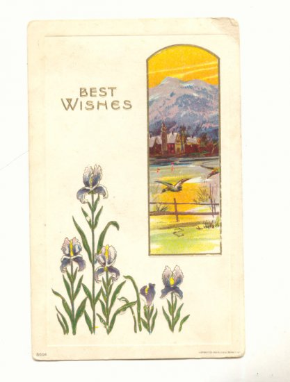 BEST WISHES, IRIS, DUCKS FLYING, MOUNTAIN VIEW POSTCARD    #401