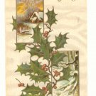 CHRISTMAS HOLLY WINTER SCENE, VINTAGE 1908 POSTCARD   #439