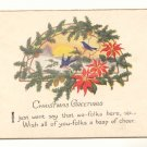 BLUE BIRDS PINECONES POINTSETTIA CHRISTMAS POSTCARD   #440