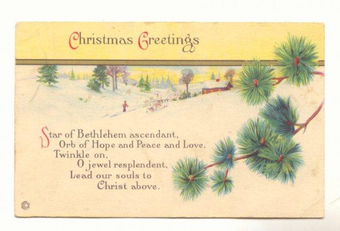 CHRISTMAS GREETING WINTER SCENE FIR BOUGHS Postcard    #445