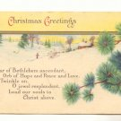 CHRISTMAS GREETING WINTER SCENE FIR BOUGHS Postcard    #445