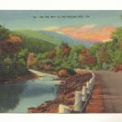 On The Way To The Pocono Mts, Pennsylvania Postcard   #447