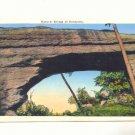 NATURAL BRIDGE OF KENTUCKY, VINTAGE LINEN POSTCARD   #451