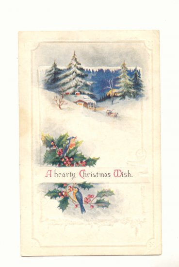 CHRISTMAS WISH, WINTER SCENE BLUE BIRD SLEIGH Postcard   #455