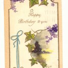 HAPPY BIRTHDAY IVY, VIOLETS, RIBBON, VINTAGE 1909 Postcard #461