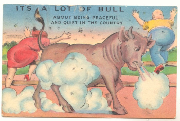IT'S A LOT OF BULL, COMIC POSTCARD BULL CHASING PEOPLE    Vintage Comic Postcard #487