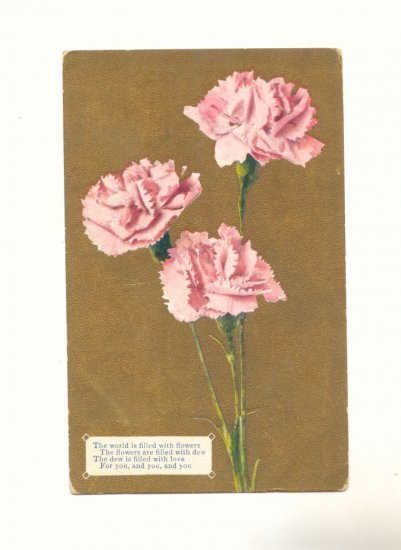 THE WORLD IS FILLED WITH FLOWERS CARNATIONS Vintage Postcard #502