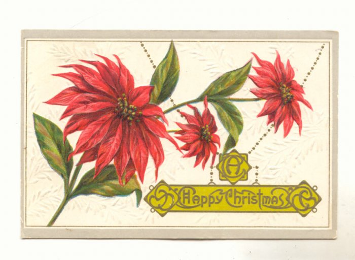 A Happy Christmas, Large Poinsettia Vintage 1912 Postcard # 533