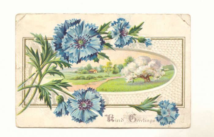Kind Greetings, Blue Flowers, Country Scene, Vintage 1911 Postcard #544