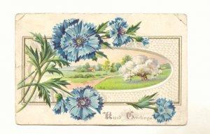 Kind Greetings, Blue Flowers, Country Scene, Vintage 1911 Postcard #544