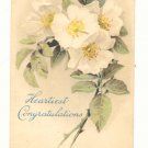 Heartiest Congratulations White Wild Roses Vintage 1911 Postcard #548
