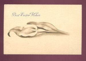 BEST EASTER WISHES LARGE CALLA LILLY VINTAGE POSTCARD #558
