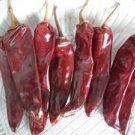 Organic Puya Chili Seeds 25 Count