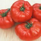 Organic Beefsteak Tomato Seeds 10 Count