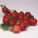 Organic Bloody Butcher Tomato Seeds 20 Count