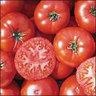 Organic Trophy Tomato Seeds 15 Count