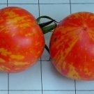 Organic Red Zebra Tomato Seeds 20 Count