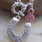 Western Pink Ribbon Breast Cancer Awareness Horseshoe Set