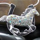 HOT NEW WESTERN COWGIRL HORSE HORSESHOE STALLION AB SET