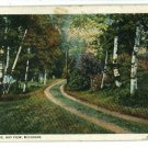 BAY VIEW MI MICHIGAN DRIVE 1929 A G COOK  POSTCARD