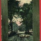 J V D SANDE A LANDSCAPE SHEEP IN PATH 1907  POSTCARD