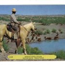 GARDINER MT MONTANA GREETINGS FROM HORSE POSTCARD