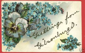 GIBSONBURG OHIO OH LARGE LETTER GREETINGS PFB  POSTCARD