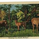 BEULAH MI MICHIGAN GREETINGS FROM 1952  POSTCARD