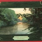 FOREST AND STREAM BY WILSON  POSTCARD