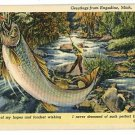 ENGADINE MI MICHIGAN BIG FISH EXAGGERATION  POSTCARD