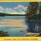 SAN ANTONIO FLORIDA FL GREETINGS FROM POSTCARD