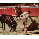 TOROS EN MEXICO BULLFIGHT POSTCARD