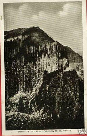 COLUMBIA RIVER OREGON BRIDGE OF THE GODS  POSTCARD