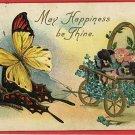 BUTTERFLY FLOWER CART BUTTERFLIES 1909 POSTCARD