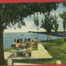 TAMPA CLEARWATER FL FLORIDA CAMPBELL PARKWAY   POSTCARD