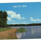 LAKE CITY MICHIGAN  SANDY BEACH WHITE BIRCHES  POSTCARD