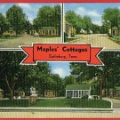 GATLINBURG TENNESSEE MAPLES' COTTAGES 1954  POSTCARD