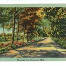 ROCHESTER MI MICHIGAN GREETINGS FROM 1946  POSTCARD
