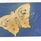 BUTTERFLY EMBOSSED VINTAGE POSTCARD BLUE BEIGE GLITTER