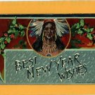 NATIVE AMERICAN INDIAN NEW YEAR WISHES HORWITZ 1912