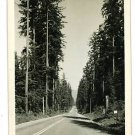 RPPC WESTERN WASHINGTON HIGHWAY ELLIS RP POSTCARD