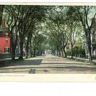 SALEM Massachusetts MA CHESTNUT DETROIT PUBL Postcard