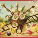 EASTER CHICKS LADDER EGGS BASKET LOG 1908 POSTCARD