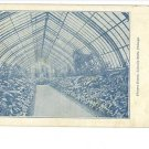 LINCOLN PARK CHICAGO FLOWER HOUSE INTERIOR POSTCARD