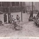 """A SCENE OF SPARTACUS"" 1960 VINTAGE  MOVIE PHOTO L3664"