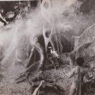 "AUDREY HEPBURN""1959 ADVENTURE VINTAGE MOVIE PHOTO L4185"